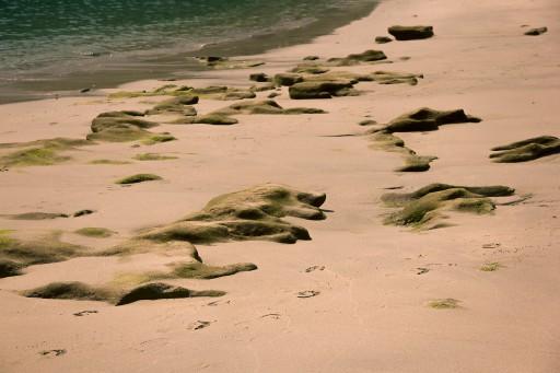 beacht_stones