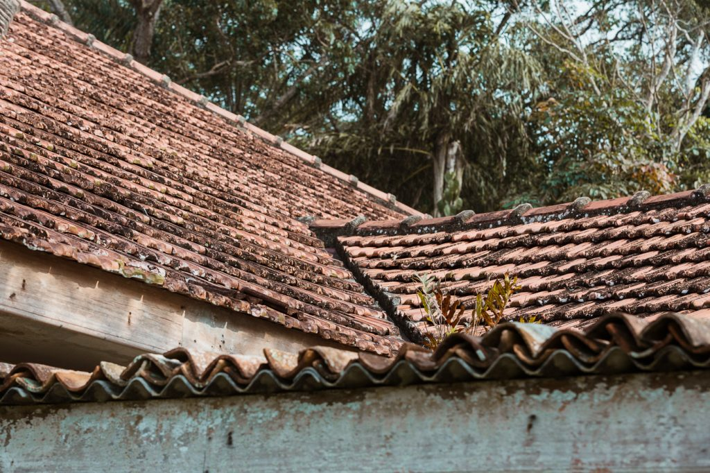 Tropical Modernism Bawa Architecture Sri Lanka